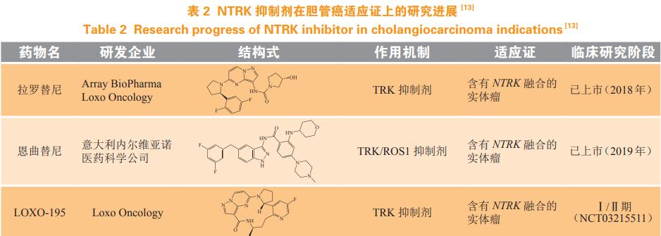 彭鹏:胆管癌靶向治疗研究进展