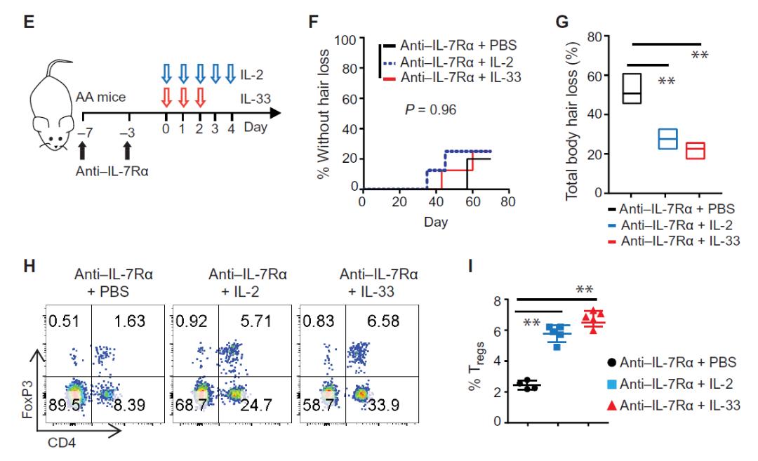 Science子刊:阻断IL-7,能够抑制炎症反应,逆转斑秃