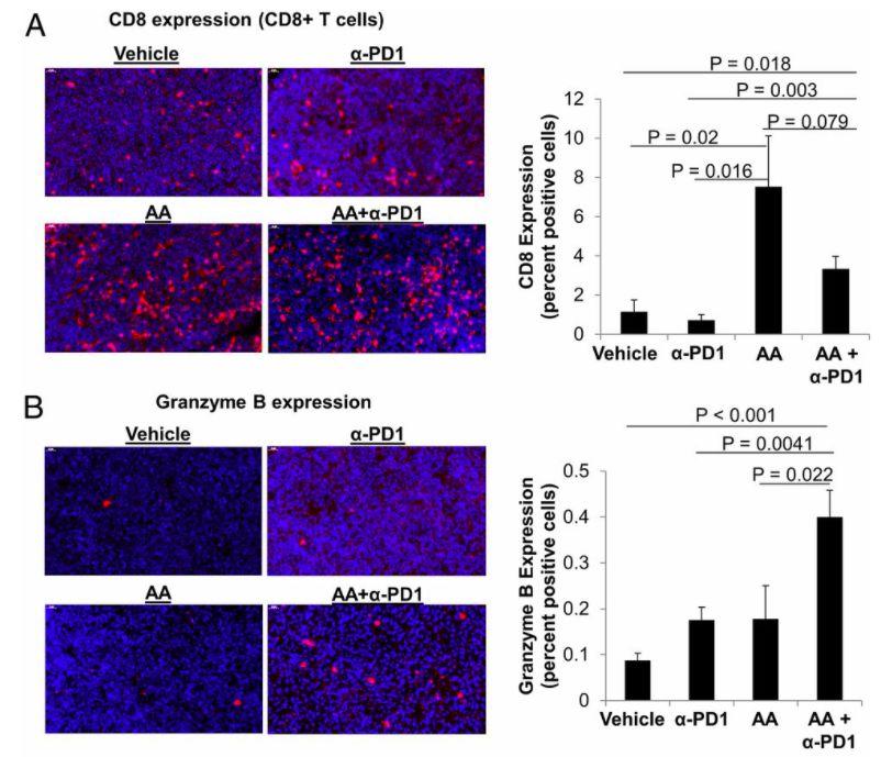 提升T细胞杀伤作用达380%!这种常见维生素,或成PD-1好拍档