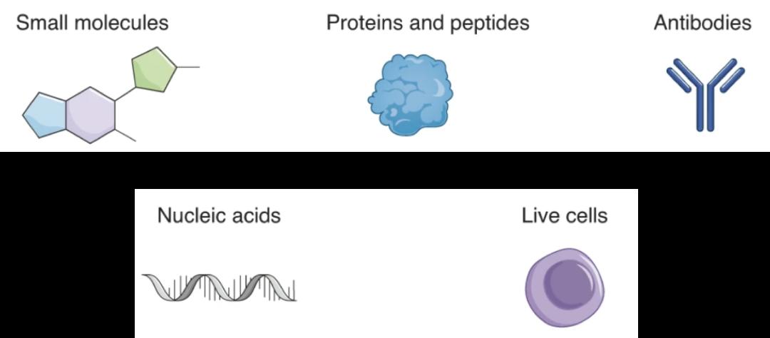 Nature综述 | 药物递送进化史