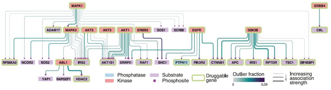 """迄今最大胶质母细胞瘤""""地图"""",丁莉团揭示致命脑瘤中起关键作用的生物图谱"""
