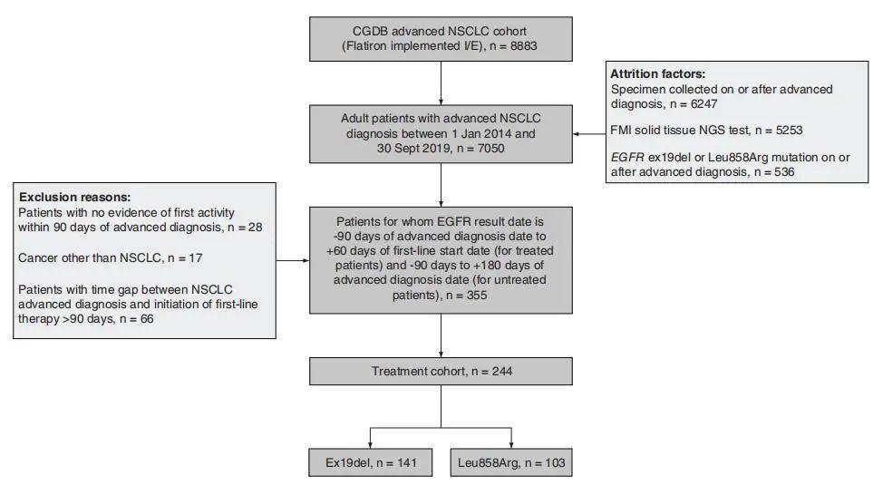 肺癌EGFR 19del和21L858R突变,治疗预后大不同!