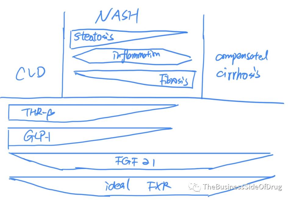 NASH专栏|漫谈NASH - 药物治疗