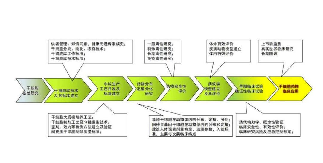 BPIT重磅报告丨吴朝晖:干细胞制剂的质量的关键在于设计和生产