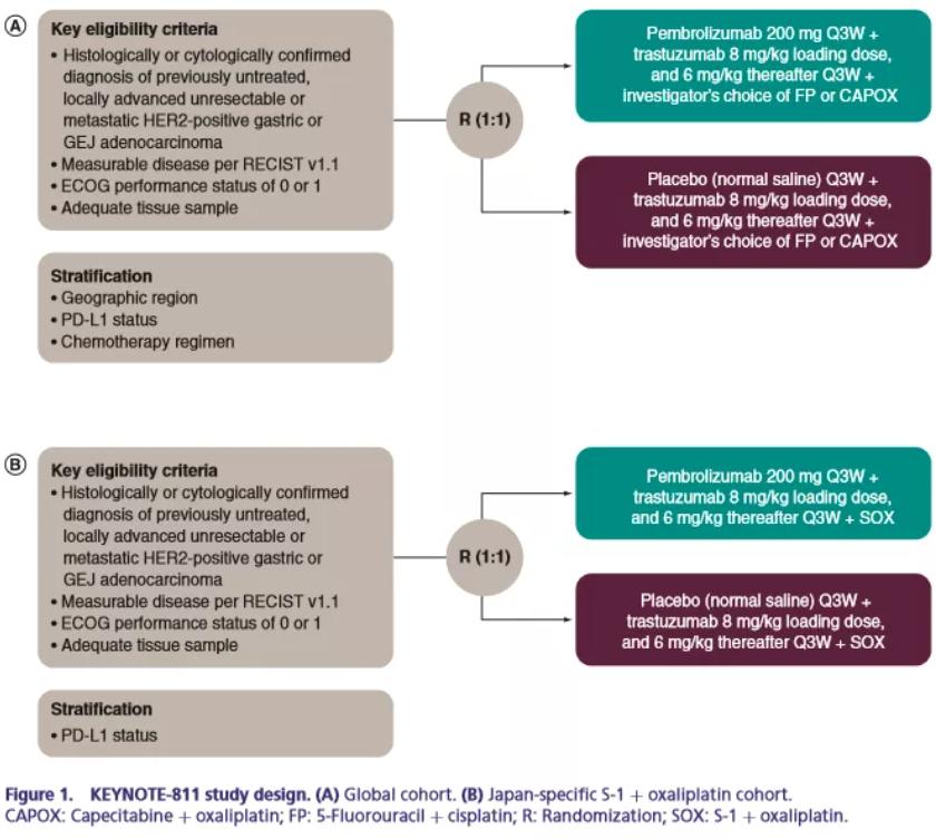 FDA加速批准了帕博利珠单抗联合曲妥珠单抗和化疗治疗HER2阳性胃癌患者