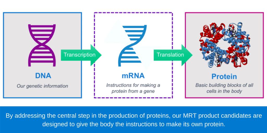 全球首款针对流感的mRNA疫苗,开启人体临床试验