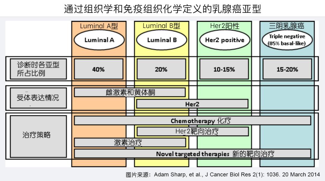 君临天下,阿贝西利联合内分泌治疗中国早期乳腺癌患者,术后复发风险大幅降低34.3%