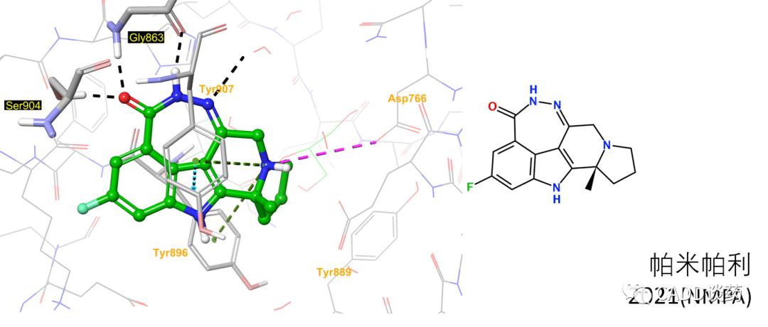 PARP抑制剂: 杂谈 & 结合模式一览