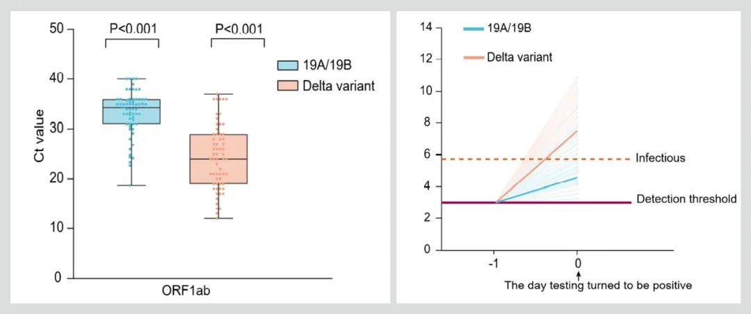 新冠Delta变体为何传播如此迅猛?我国学者发现其病毒载量暴增1000倍,潜伏期缩短