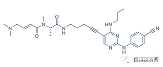 挑战恶性血癌,靶向FLT3药物的最新进展