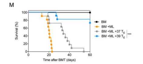 《PNAS》重磅进展!发烧可更好激活免疫,帮助对抗癌症!