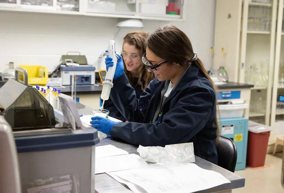 辉瑞专栏 | 成功的CDMO合作如何为无菌注射产品的成功奠定基础 (第一部分,共计六部分)