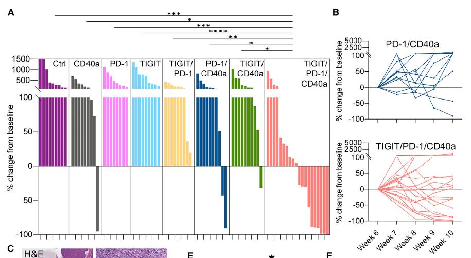 PD-1+TIGIT+CD40,三药联用清除胰腺癌,即将开展临床试验
