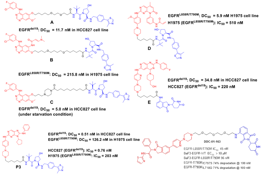 新药研发利器:PROTAC技术(最全解读)