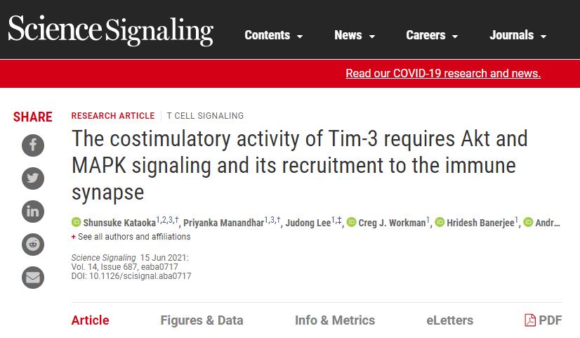 """""""连轴转""""T细胞也会""""精疲力竭""""!如何让T细胞重新恢复活力?《Science》子刊新方法"""