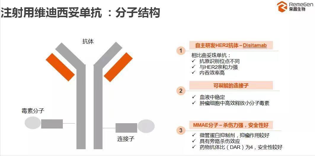 HER2 ADC创新浪潮!科伦、荣昌、复星...竞技特长几何?