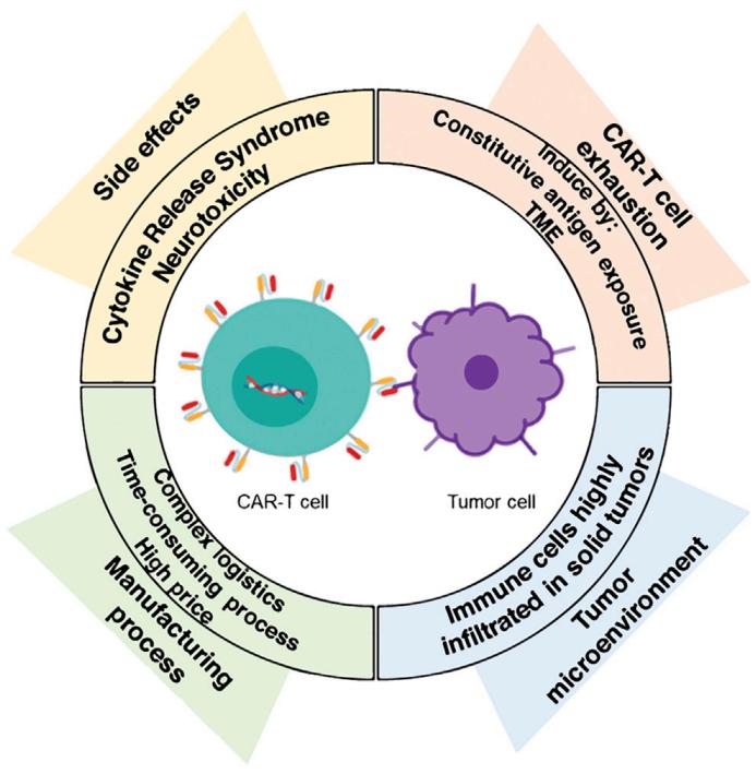 CAR-T细胞治疗的挑战